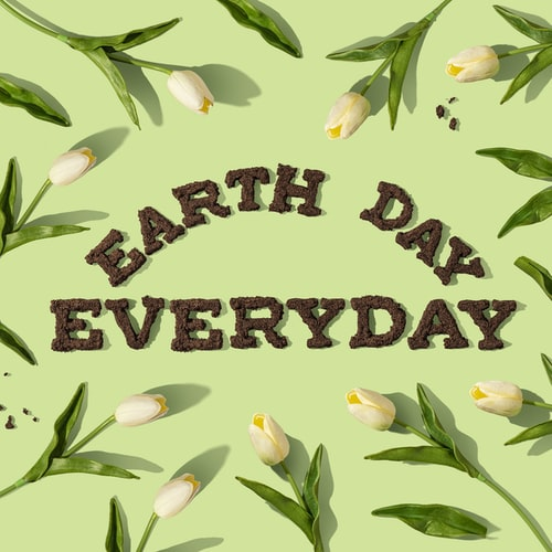 earth day everyday written in soil surrounded by flowers