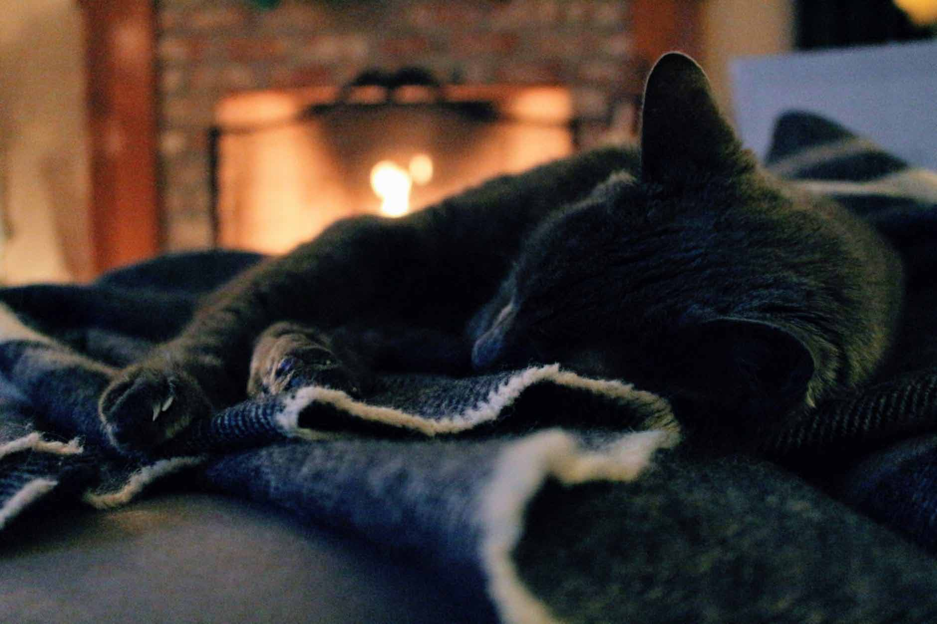 perfect temperature for warm home