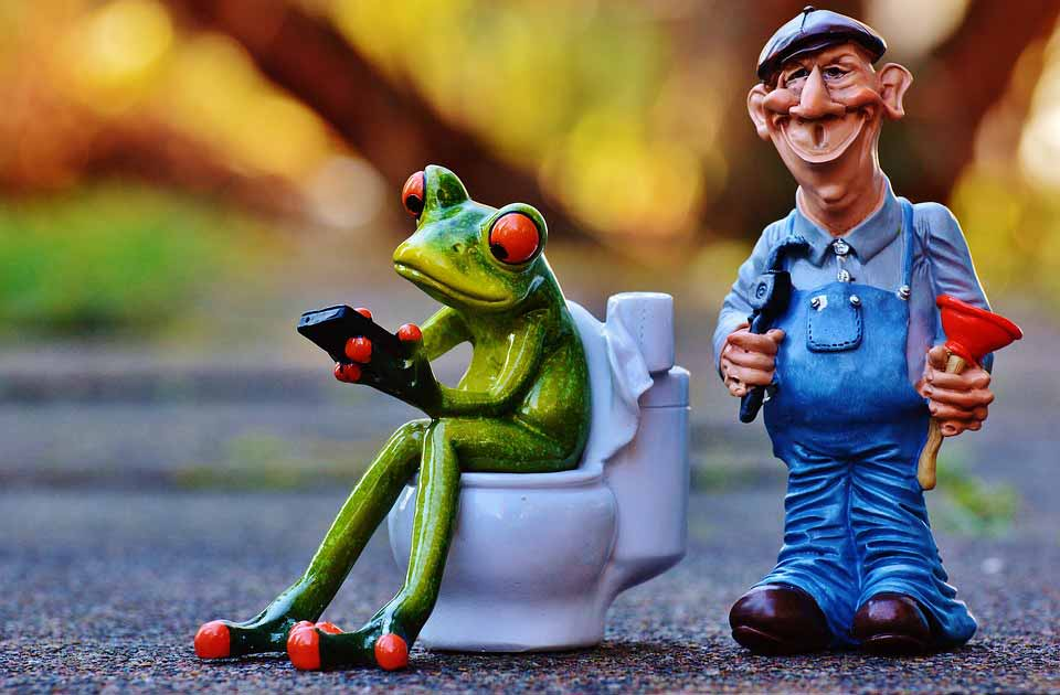 plumbing work plumber and toilet with a frog
