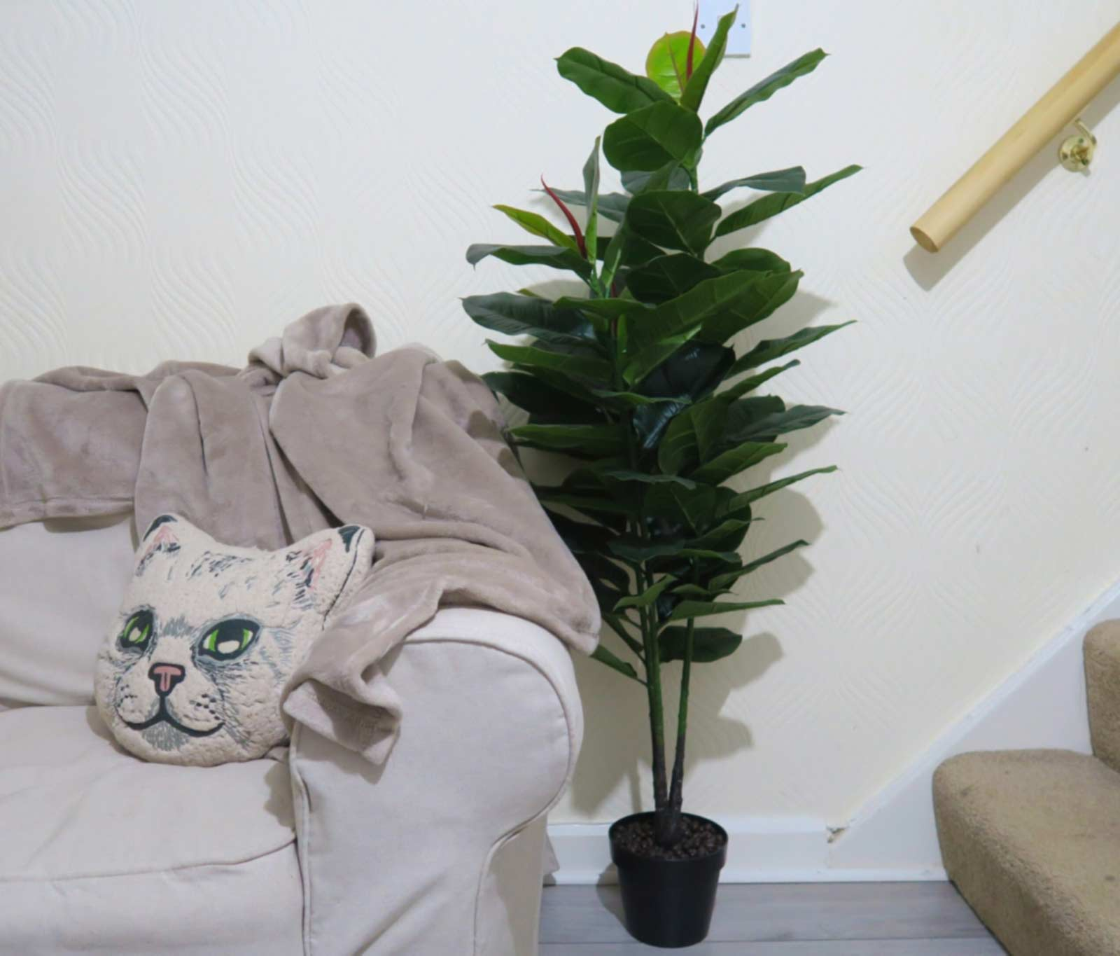 sofa and house plant leading to stairs